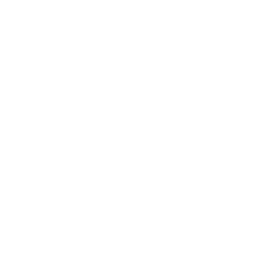Logo Henri Desmoulins blanc HD